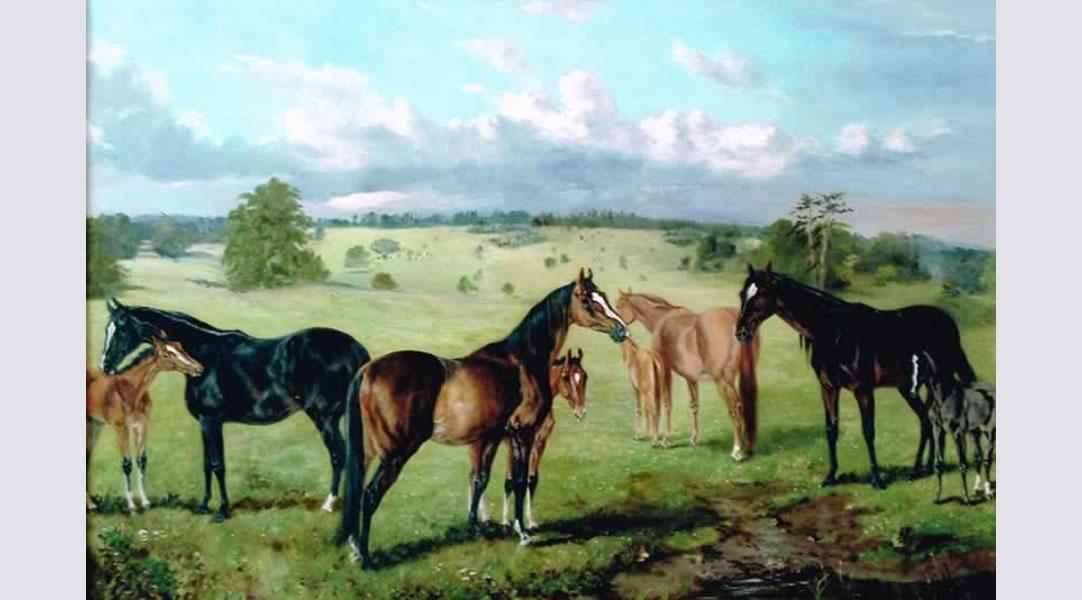 After-Horses -Restoration