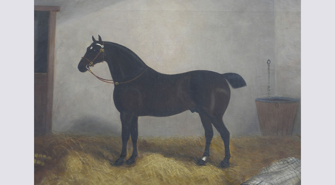 After-Horse