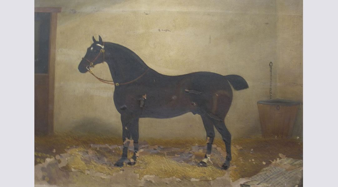 Before-Horse